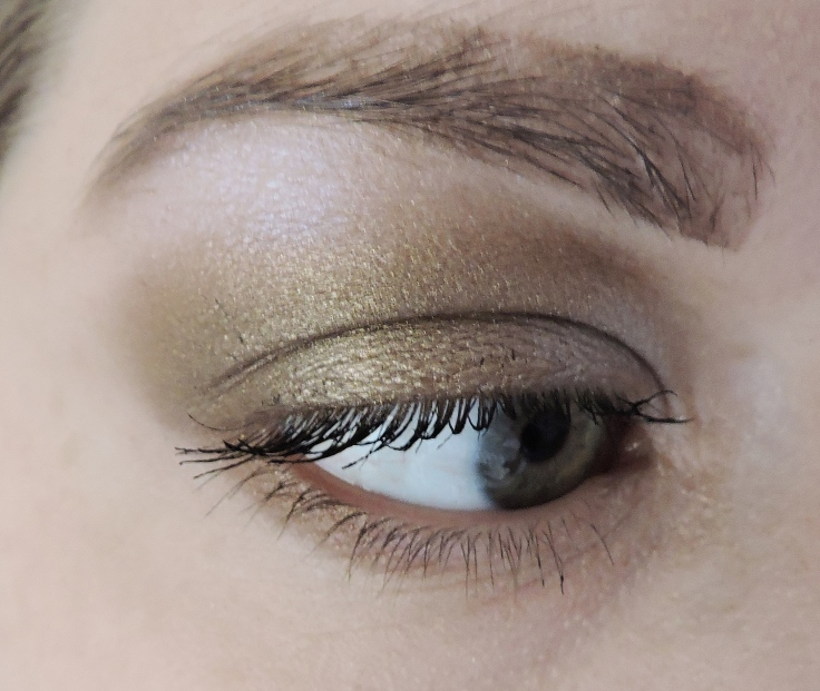gold-eye-side
